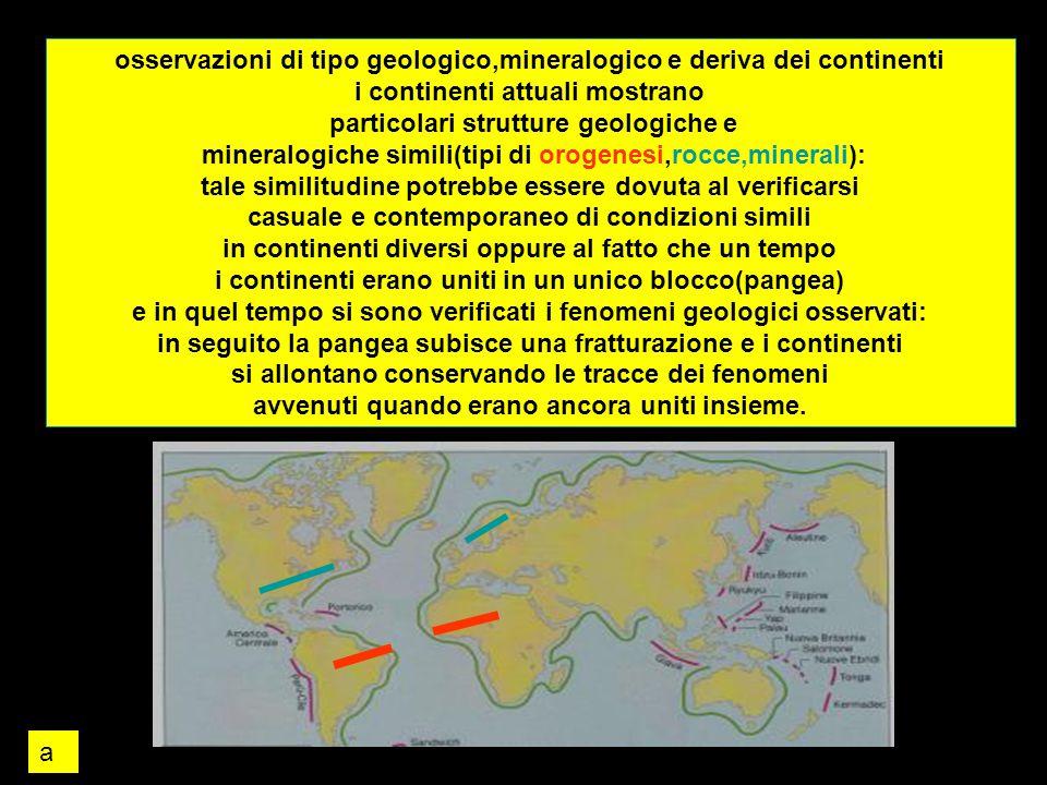 osservazioni di tipo geologico,mineralogico e deriva dei continenti i continenti attuali mostrano particolari strutture geologiche e mineralogiche sim