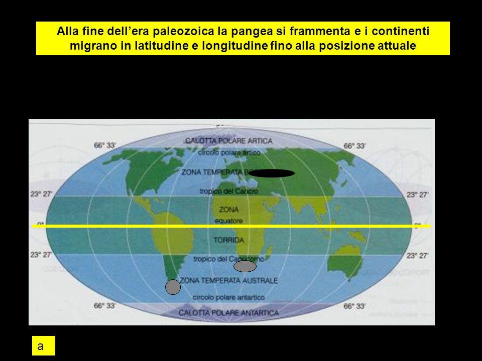 Alla fine dell'era paleozoica la pangea si frammenta e i continenti migrano in latitudine e longitudine fino alla posizione attuale a