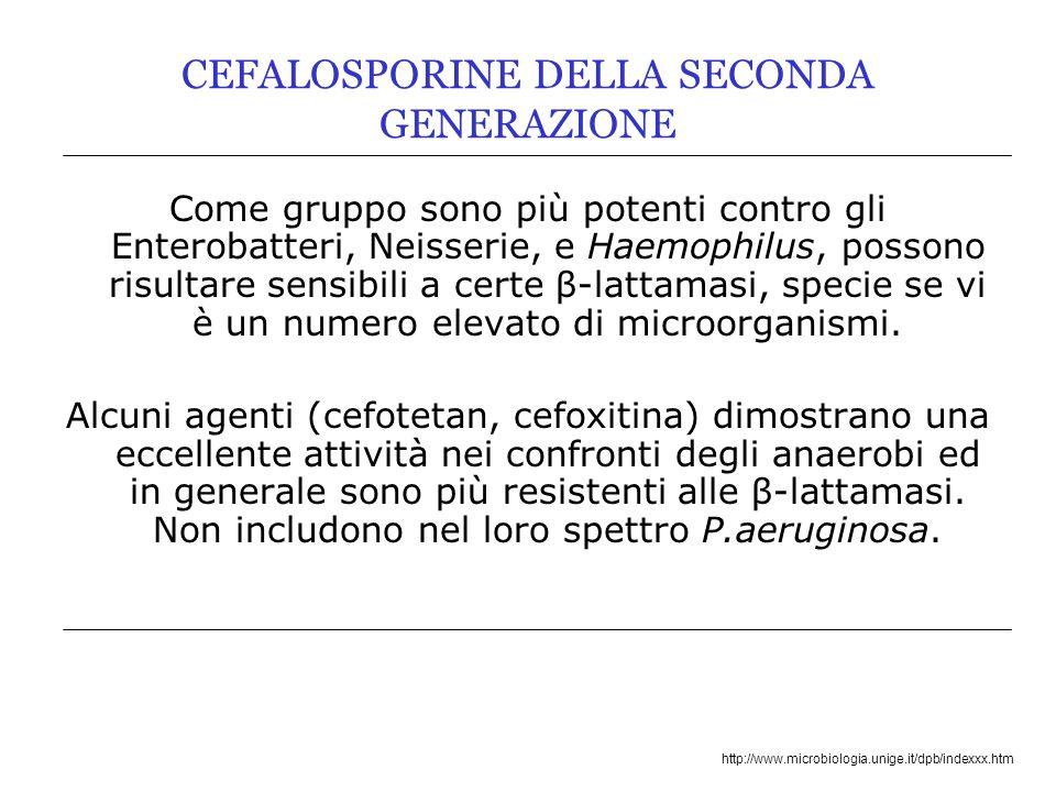 http://www.microbiologia.unige.it/dpb/indexxx.htm CEFALOSPORINE DELLA SECONDA GENERAZIONE Come gruppo sono più potenti contro gli Enterobatteri, Neiss