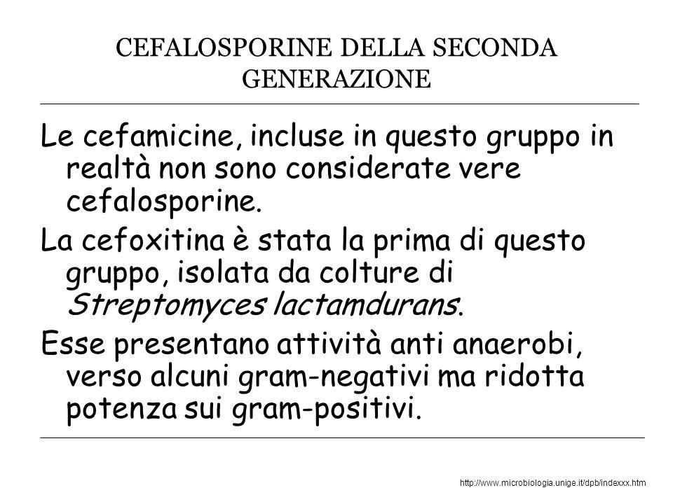 http://www.microbiologia.unige.it/dpb/indexxx.htm CEFALOSPORINE DELLA SECONDA GENERAZIONE Le cefamicine, incluse in questo gruppo in realtà non sono considerate vere cefalosporine.