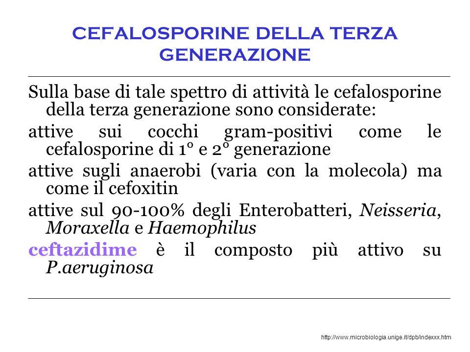 http://www.microbiologia.unige.it/dpb/indexxx.htm CEFALOSPORINE DELLA TERZA GENERAZIONE Sulla base di tale spettro di attività le cefalosporine della terza generazione sono considerate: attive sui cocchi gram-positivi come le cefalosporine di 1° e 2° generazione attive sugli anaerobi (varia con la molecola) ma come il cefoxitin attive sul 90-100% degli Enterobatteri, Neisseria, Moraxella e Haemophilus ceftazidime è il composto più attivo su P.aeruginosa