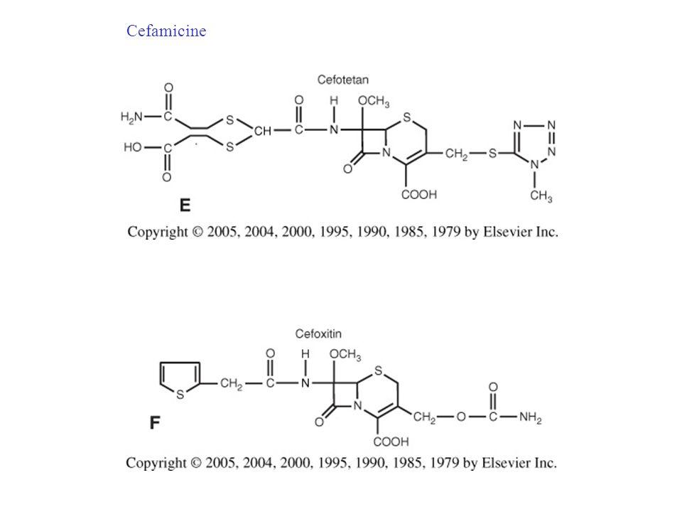 http://www.microbiologia.unige.it/dpb/indexxx.htm Cefalosporine proprietà comuni Le cefalosporine presentano un comune meccanismo d'azione Come tutti i β-lattamici interferiscono con le PBP, in particolare hanno alta affinità per 1a, 1b, 2, e 3 che di fatto sono dette PBP essenziali, tra i vari composti esiste una variabilità nell'affinità e nella resistenza agli enzimi inattivanti (β-lattamasi o cefalosporinasi).