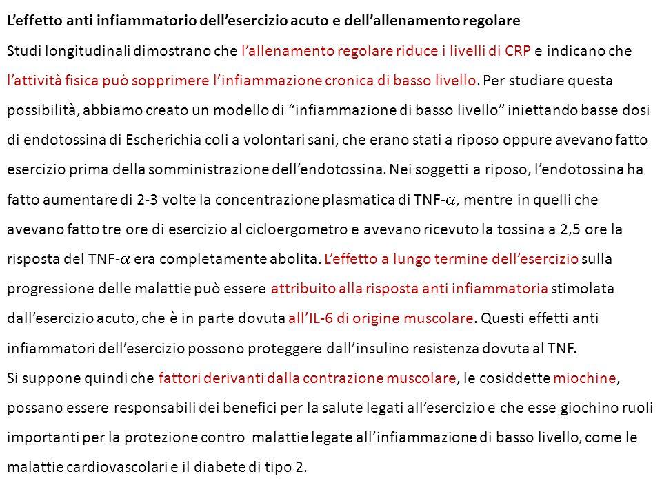 L'effetto anti infiammatorio dell'esercizio acuto e dell'allenamento regolare Studi longitudinali dimostrano che l'allenamento regolare riduce i livel