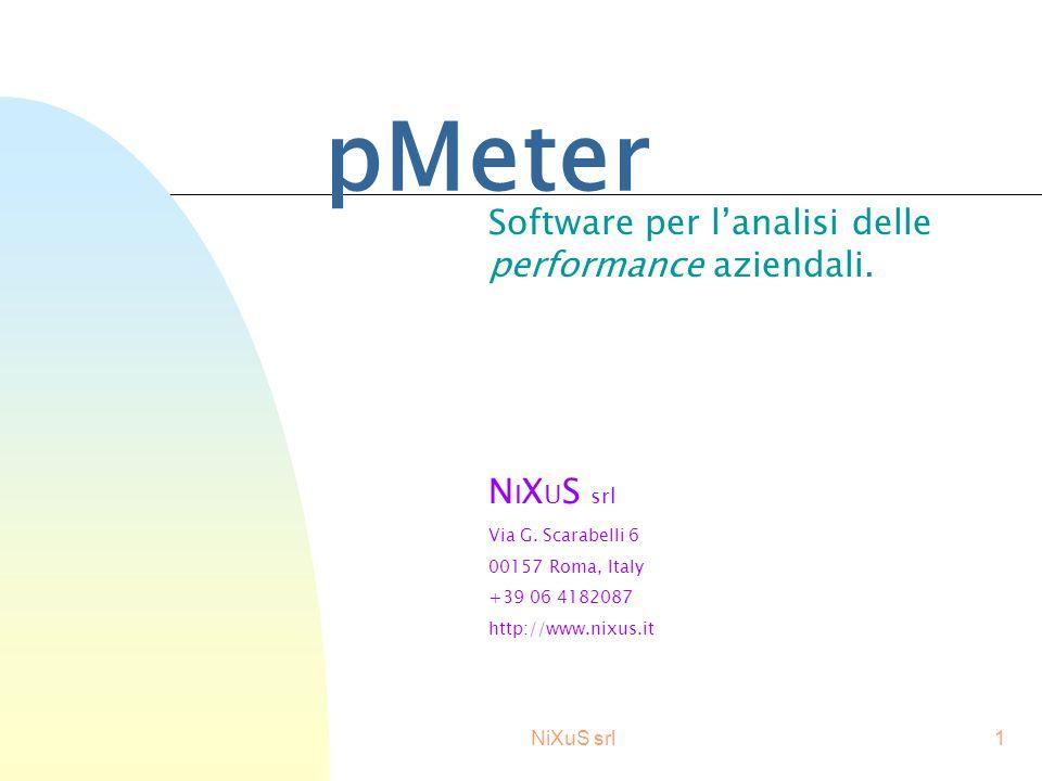 NiXuS srl1 pMeter Software per l'analisi delle performance aziendali.
