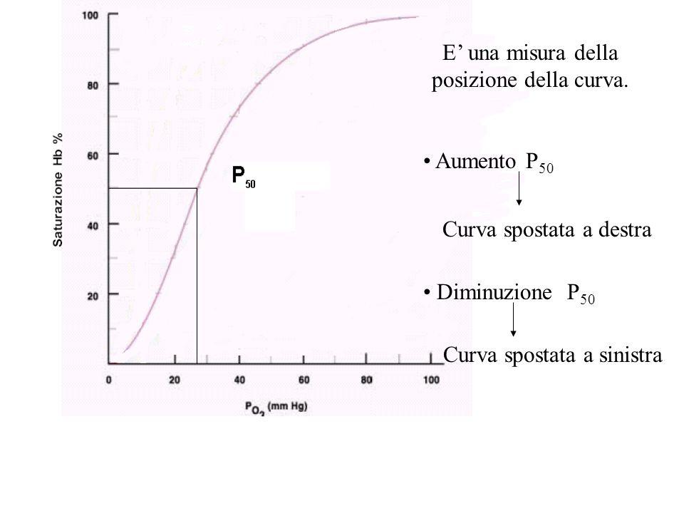E' una misura della posizione della curva. Aumento P 50 Curva spostata a destra Diminuzione P 50 Curva spostata a sinistra