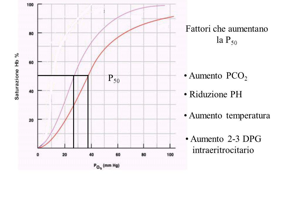 P 50 Fattori che aumentano la P 50 Aumento temperatura Riduzione PH Aumento PCO 2 Aumento 2-3 DPG intraeritrocitario