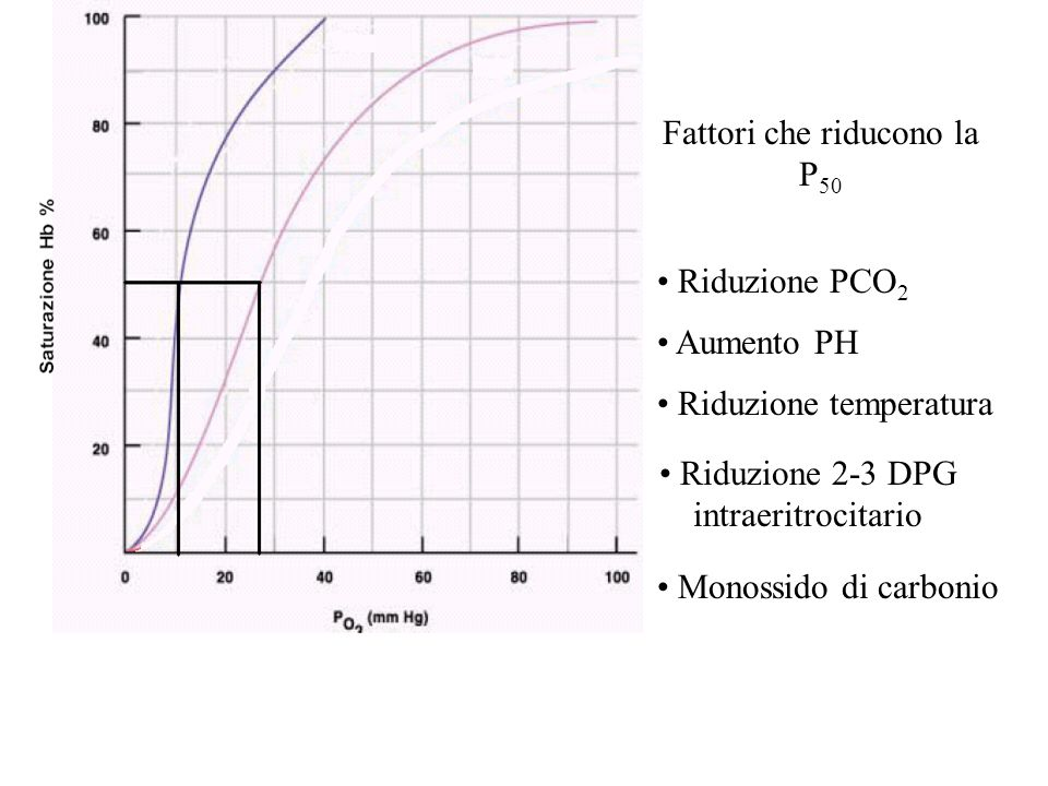 Fattori che riducono la P 50 Riduzione PCO 2 Aumento PH Riduzione temperatura Riduzione 2-3 DPG intraeritrocitario Monossido di carbonio