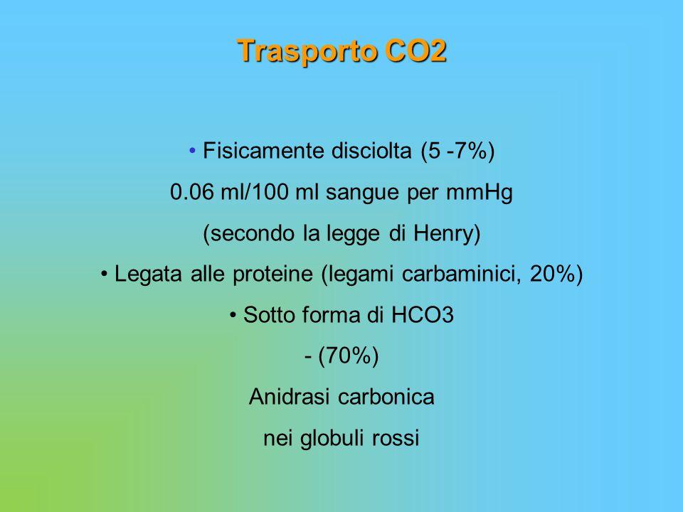 Trasporto CO2 Fisicamente disciolta (5 -7%) 0.06 ml/100 ml sangue per mmHg (secondo la legge di Henry) Legata alle proteine (legami carbaminici, 20%)