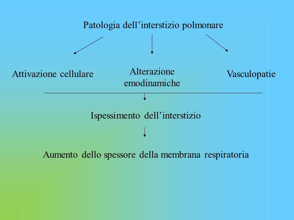 Patologia dell'interstizio polmonare Attivazione cellulare Alterazione emodinamiche Vasculopatie Ispessimento dell'interstizio Aumento dello spessore