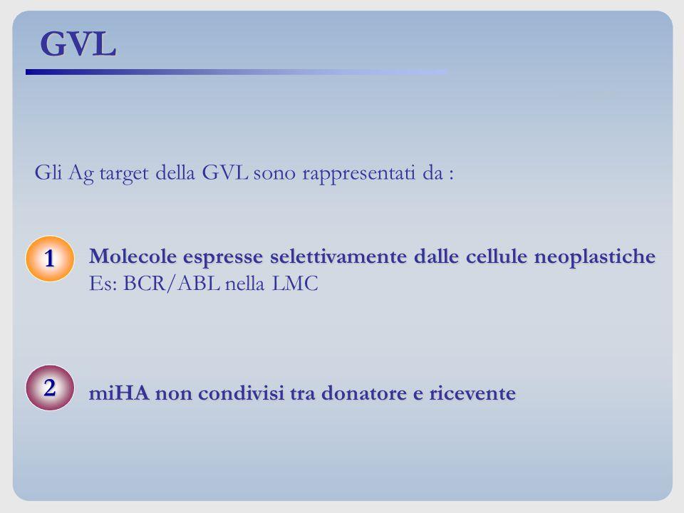 Molecole espresse selettivamente dalle cellule neoplastiche Es: BCR/ABL nella LMC miHA non condivisi tra donatore e ricevente 1 2 Gli Ag target della