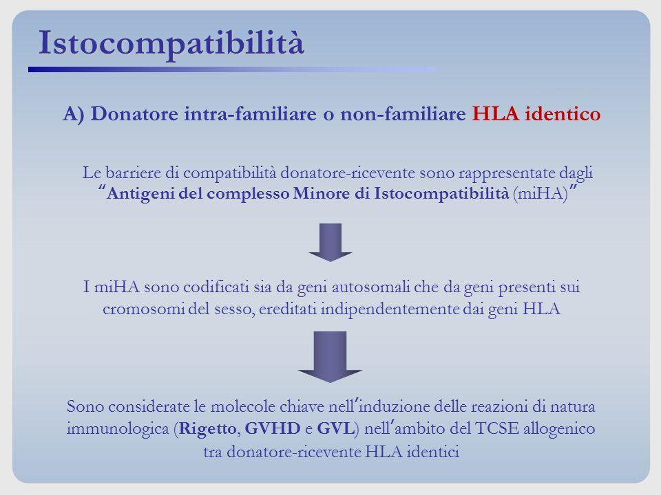 """Istocompatibilità Le barriere di compatibilità donatore-ricevente sono rappresentate dagli """"Antigeni del complesso Minore di Istocompatibilità (miHA)"""""""