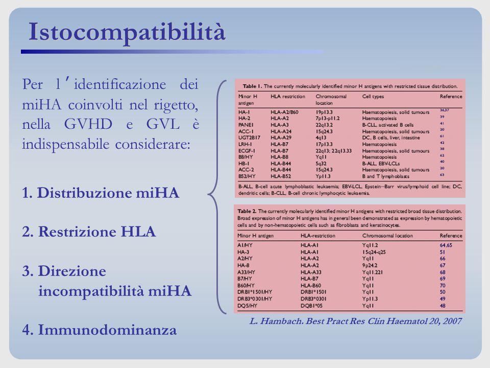 Per l'identificazione dei miHA coinvolti nel rigetto, nella GVHD e GVL è indispensabile considerare: 1. Distribuzione miHA 2. Restrizione HLA 3. Direz