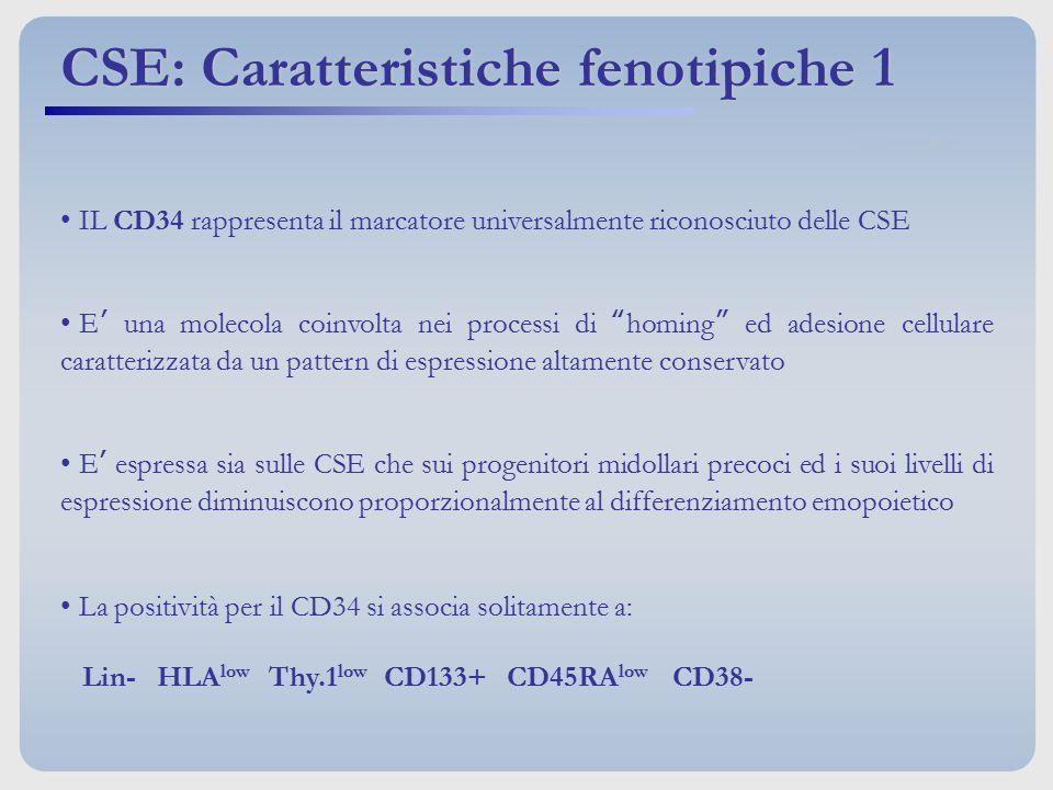 """IL CD34 rappresenta il marcatore universalmente riconosciuto delle CSE E' una molecola coinvolta nei processi di """"homing"""" ed adesione cellulare caratt"""