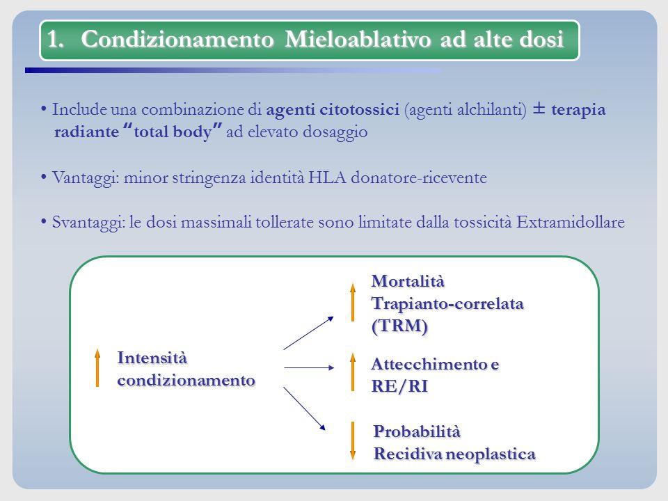 """1.Condizionamento Mieloablativo ad alte dosi Include una combinazione di agenti citotossici (agenti alchilanti) ± terapia radiante """"total body"""" ad ele"""