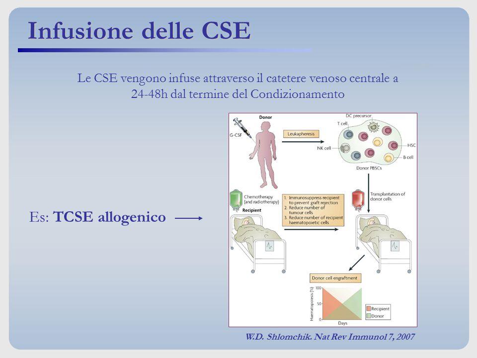 Le CSE vengono infuse attraverso il catetere venoso centrale a 24-48h dal termine del Condizionamento Infusione delle CSE Es: TCSE allogenico W.D. Shl