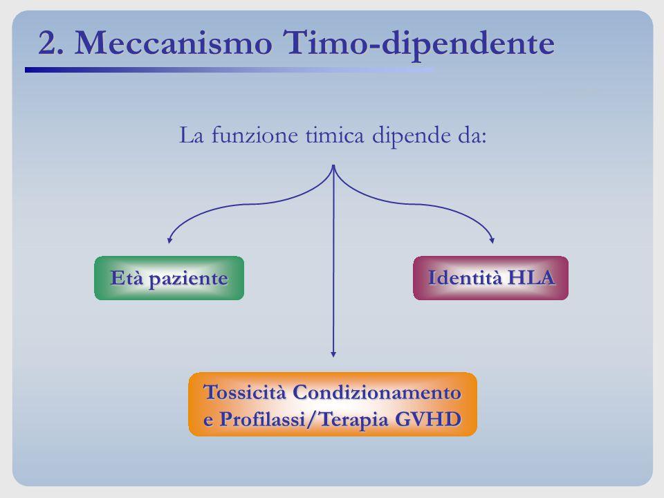 La funzione timica dipende da: Identità HLA Età paziente Tossicità Condizionamento e Profilassi/Terapia GVHD 2. Meccanismo Timo-dipendente