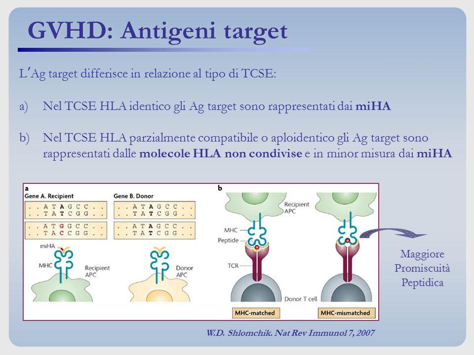 L'Ag target differisce in relazione al tipo di TCSE: a)Nel TCSE HLA identico gli Ag target sono rappresentati dai miHA b)Nel TCSE HLA parzialmente com