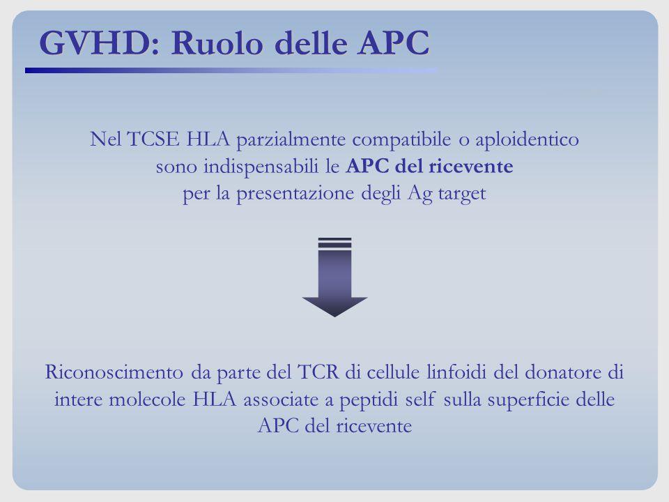 Nel TCSE HLA parzialmente compatibile o aploidentico sono indispensabili le APC del ricevente per la presentazione degli Ag target Riconoscimento da p
