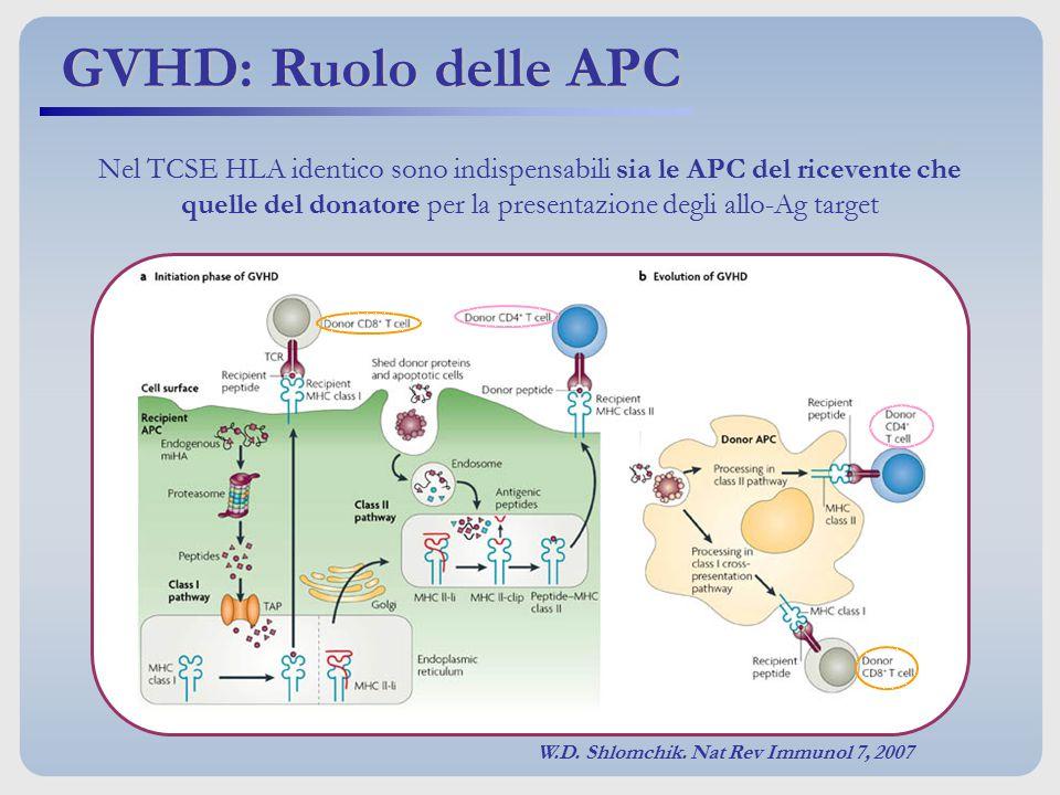 W.D. Shlomchik. Nat Rev Immunol 7, 2007 Nel TCSE HLA identico sono indispensabili sia le APC del ricevente che quelle del donatore per la presentazion