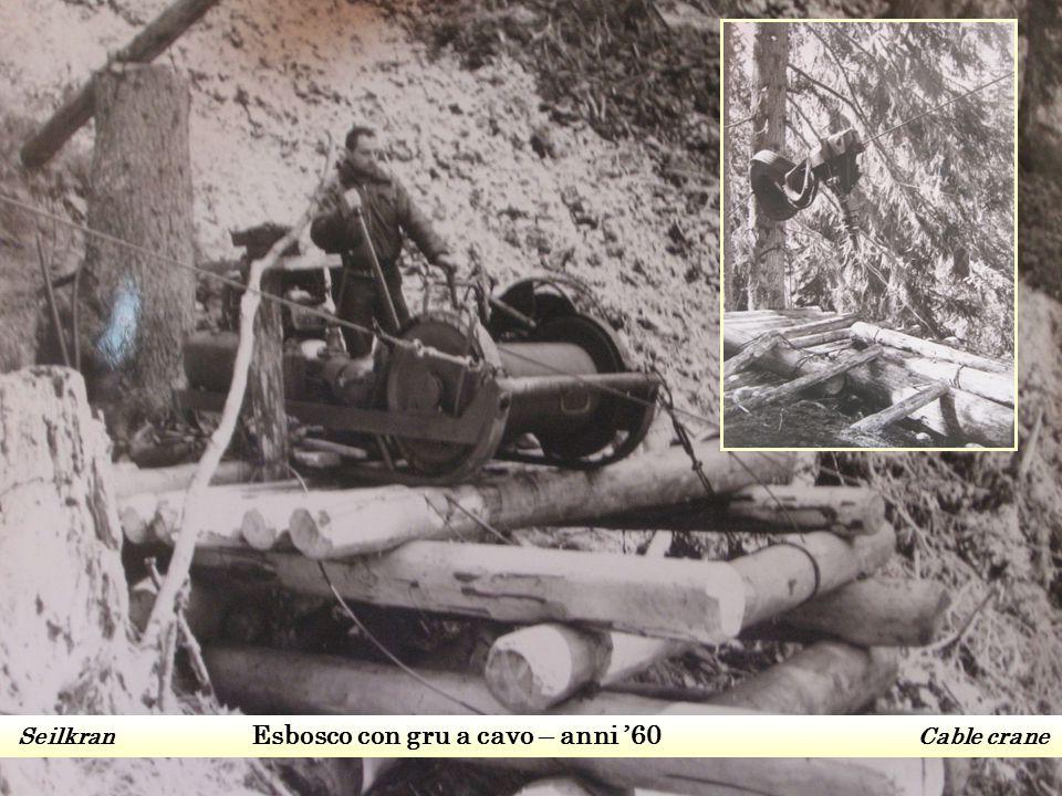Seilkran Esbosco con gru a cavo – anni '60 Cable crane