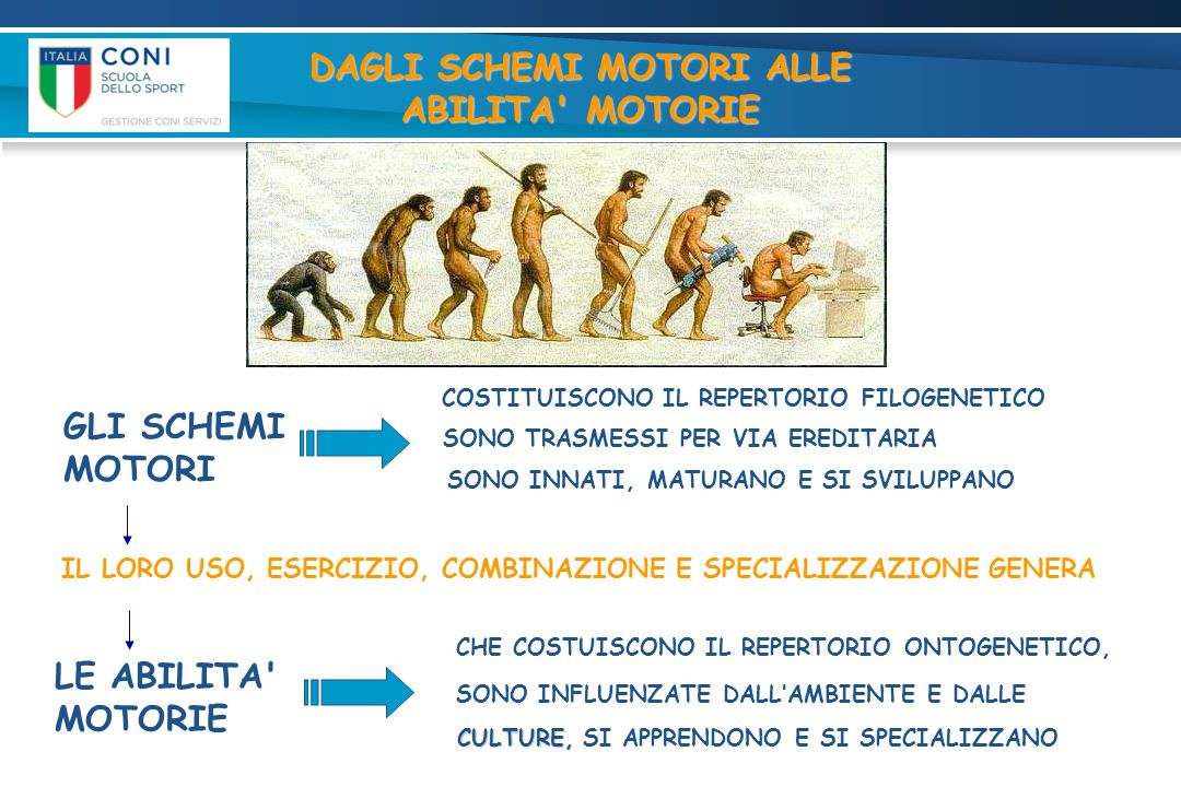 GLI SCHEMI MOTORI  GLI SCHEMI MOTORI (REPERTORIO MOTORIO GENETICO PREESISTENTE) GENERANO ABILITA MOTORIE  ABILITA MOTORIE (REPERTORIO MOTORIO APPRESO CON L USO E L ESERCIZIO) CHE A LORO VOLTA GENERANO FONDAMENTALI TECNICI SPORTIVI  FONDAMENTALI TECNICI SPORTIVI (REPERTORIO MOTORIO SPECIALIZZATO CON L ALLENAMENTO).