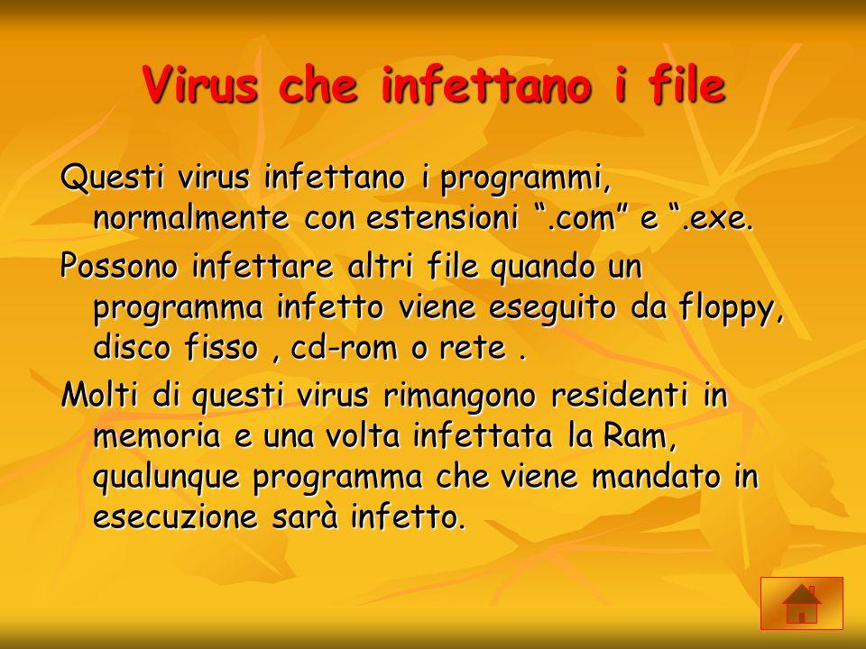 """Virus che infettano i file Questi virus infettano i programmi, normalmente con estensioni """".com"""" e """".exe. Possono infettare altri file quando un progr"""