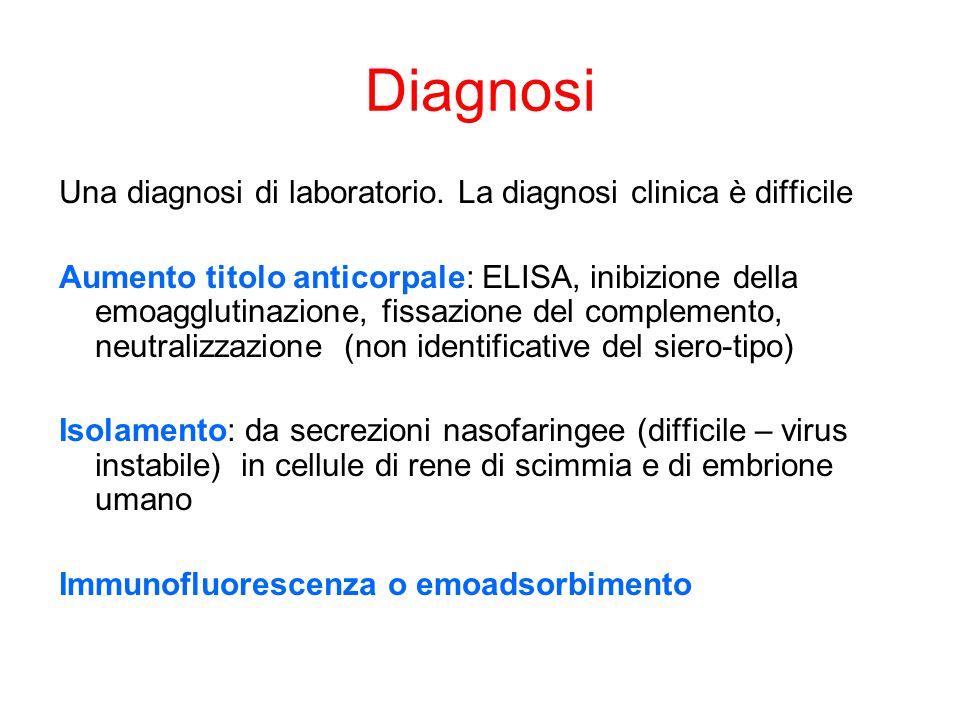 Diagnosi Una diagnosi di laboratorio. La diagnosi clinica è difficile Aumento titolo anticorpale: ELISA, inibizione della emoagglutinazione, fissazion