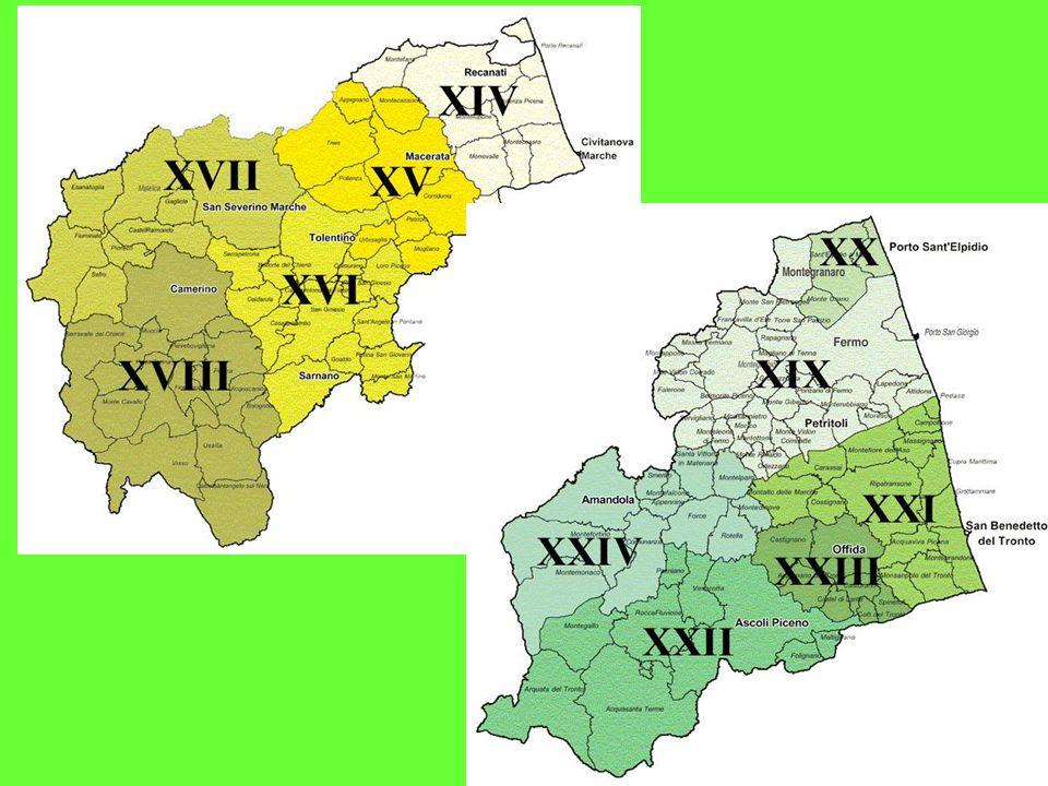 Direttore di distretto (Distretto n.1 Dr. Licio Livini) (Distretto n.