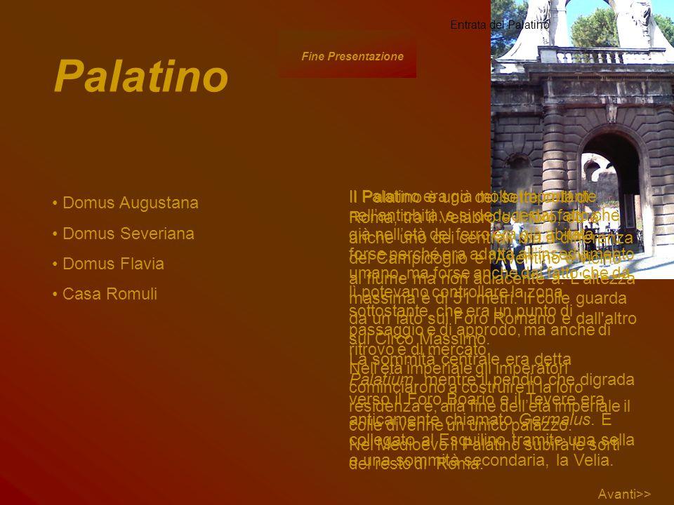 Palatino Domus Augustana Domus Severiana Domus Flavia Casa Romuli Il Palatino è uno dei sette colli di Roma, tra il Velabro e il foro, ed è anche uno