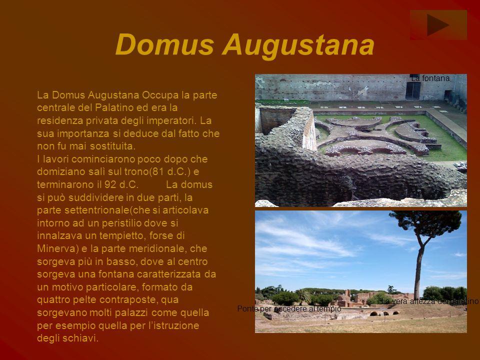 Domus Augustana La Domus Augustana Occupa la parte centrale del Palatino ed era la residenza privata degli imperatori. La sua importanza si deduce dal