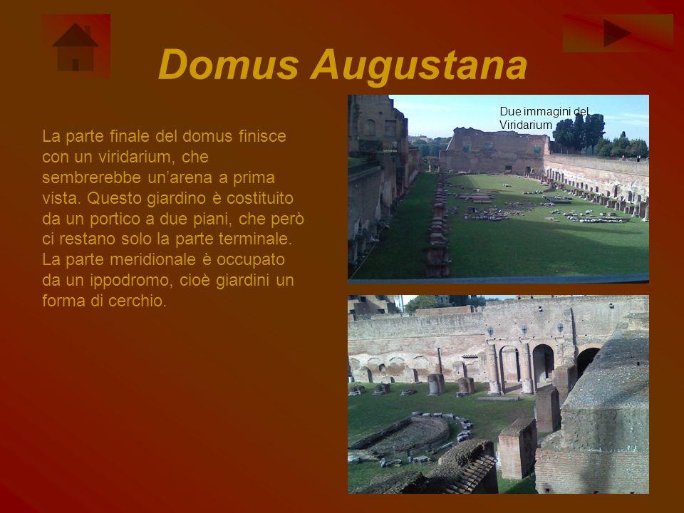 Domus Augustana La parte finale del domus finisce con un viridarium, che sembrerebbe un'arena a prima vista. Questo giardino è costituito da un portic