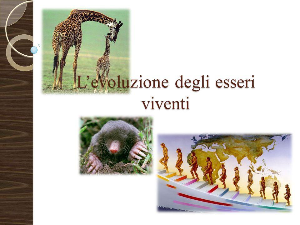 L'evoluzione degli esseri viventi