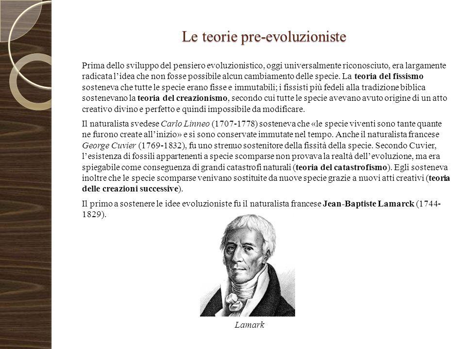 Le teorie pre-evoluzioniste Prima dello sviluppo del pensiero evoluzionistico, oggi universalmente riconosciuto, era largamente radicata l'idea che no