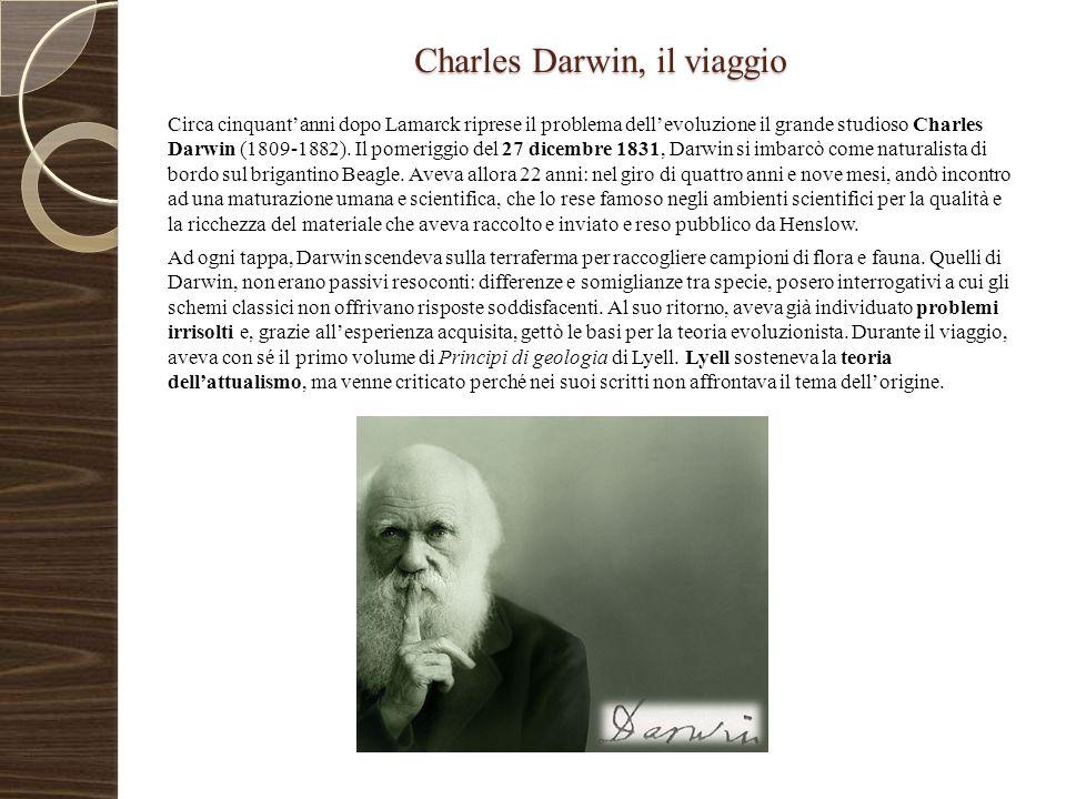 Charles Darwin, il viaggio Circa cinquant'anni dopo Lamarck riprese il problema dell'evoluzione il grande studioso Charles Darwin (1809-1882). Il pome