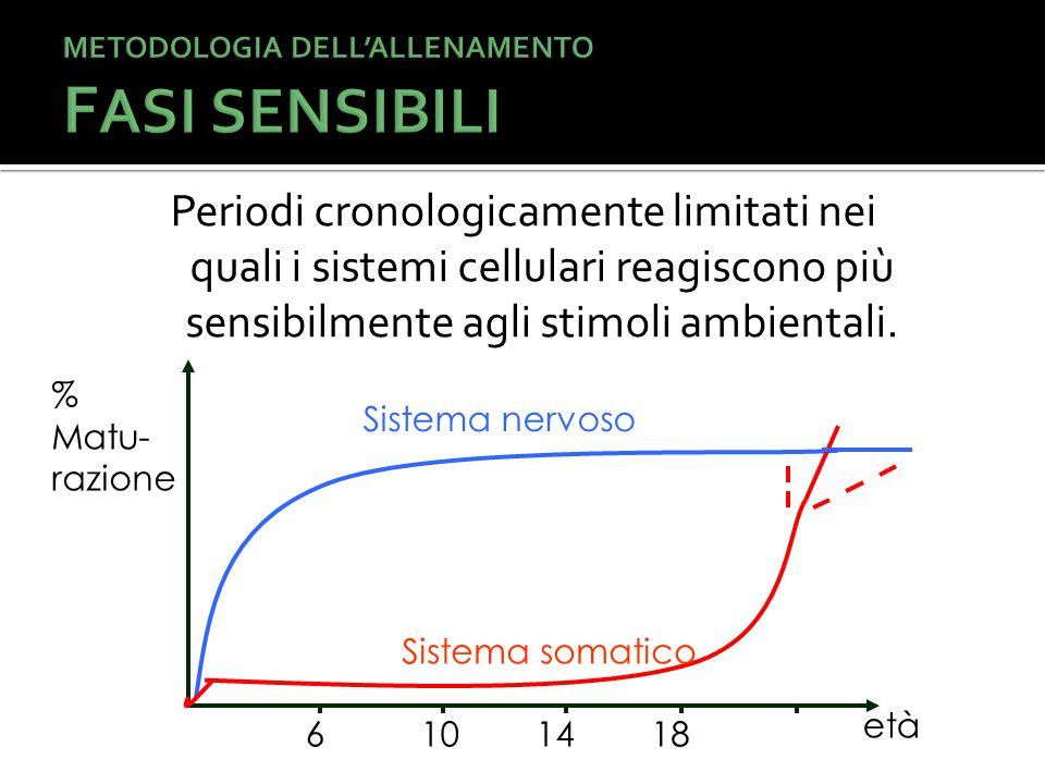 Periodi cronologicamente limitati nei quali i sistemi cellulari reagiscono più sensibilmente agli stimoli ambientali.