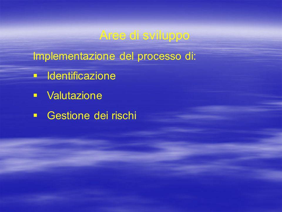 Aree di sviluppo Implementazione del processo di:  Identificazione  Valutazione  Gestione dei rischi