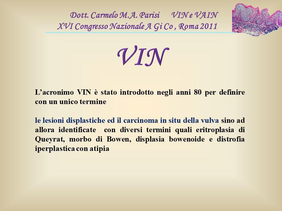 L'acronimo VIN è stato introdotto negli anni 80 per definire con un unico termine le lesioni displastiche ed il carcinoma in situ della vulva sino ad