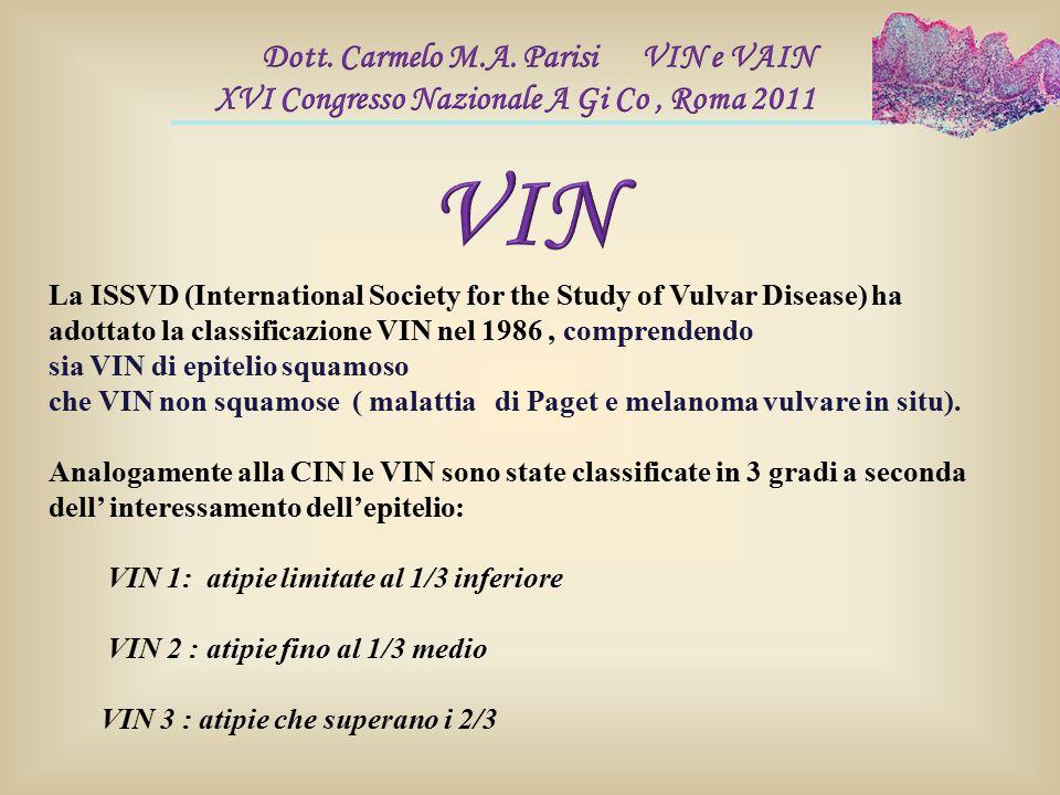 La ISSVD (International Society for the Study of Vulvar Disease) ha adottato la classificazione VIN nel 1986, comprendendo sia VIN di epitelio squamos