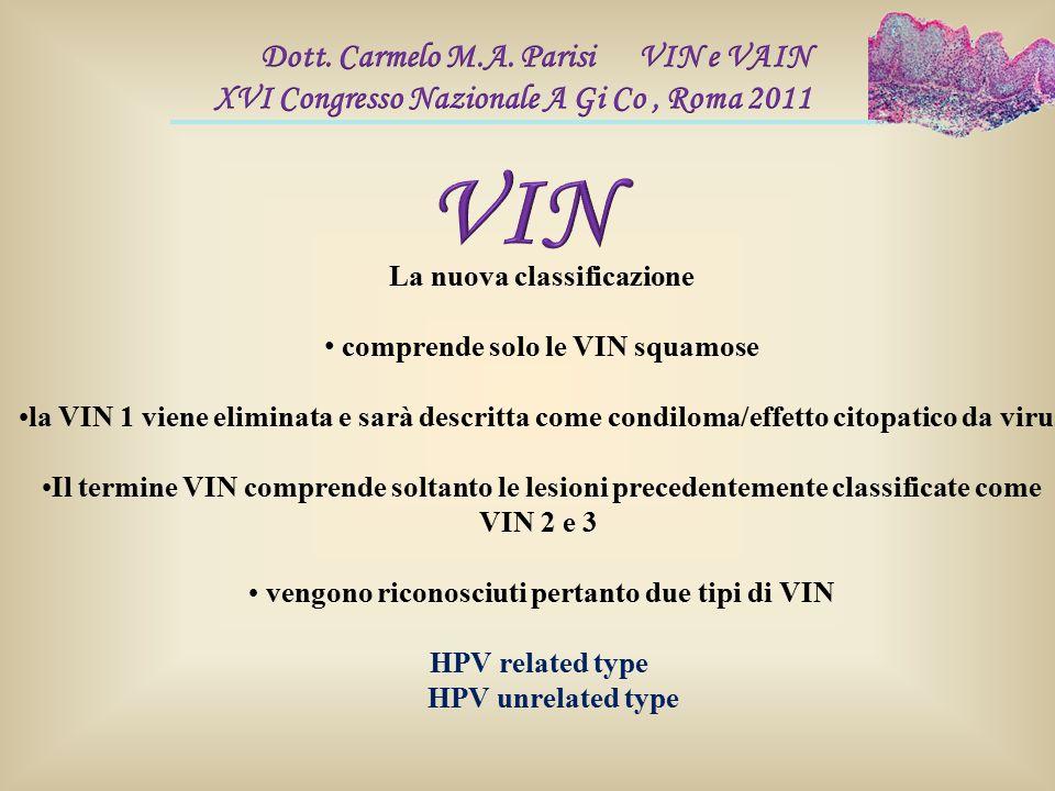 La nuova classificazione comprende solo le VIN squamose la VIN 1 viene eliminata e sarà descritta come condiloma/effetto citopatico da virus Il termin