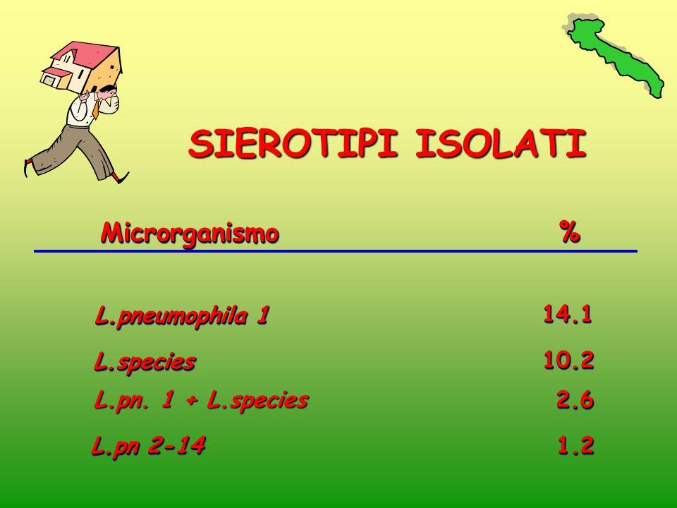 MicrorganismoMicrorganismo % % L.pneumophila 1 14.114.1 L.pn 2-14 1.21.2 L.speciesL.species 10.2 10.2 2.6 2.6 L.pn. 1 + L.species SIEROTIPI ISOLATI