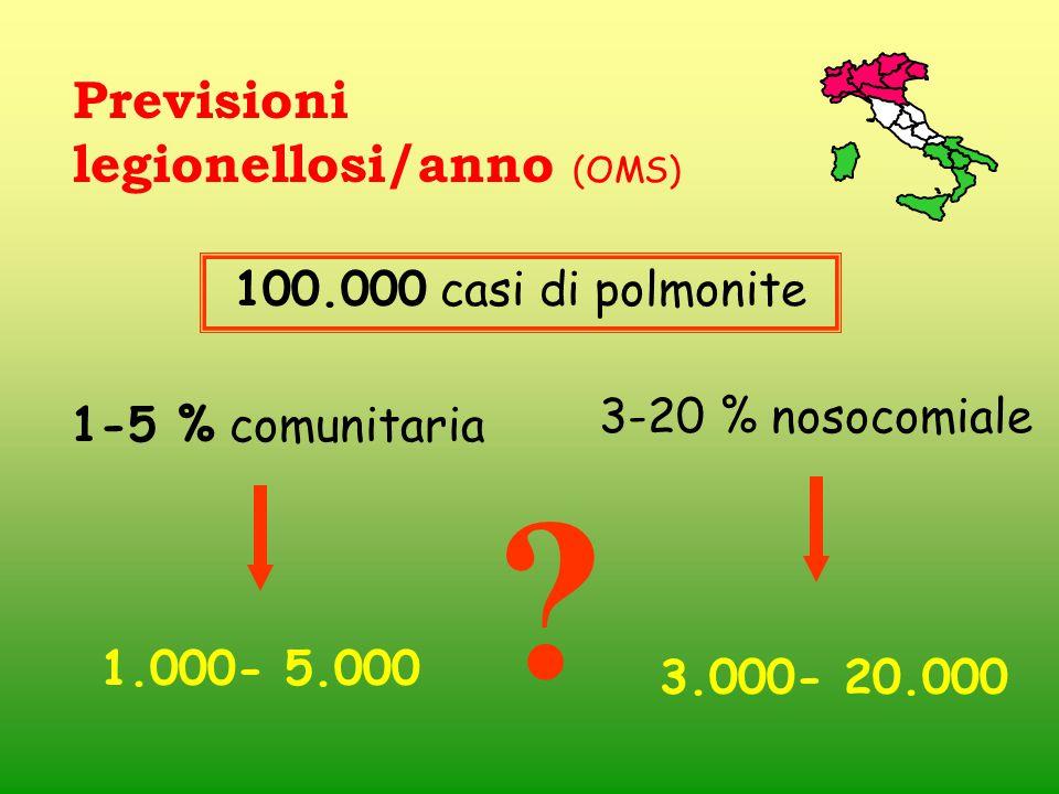 Previsioni legionellosi/anno (OMS) ? 3-20 % nosocomiale 100.000 casi di polmonite 3.000- 20.000 1-5 % comunitaria 1.000- 5.000