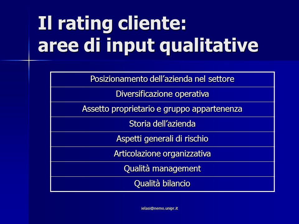 ielasi@nemo.unipr.it Il rating cliente: aree di input qualitative Posizionamento dell'azienda nel settore Diversificazione operativa Assetto proprieta