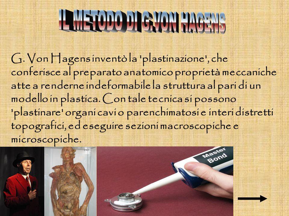 G. Von Hagens inventò la 'plastinazione', che conferisce al preparato anatomico proprietà meccaniche atte a renderne indeformabile la struttura al par