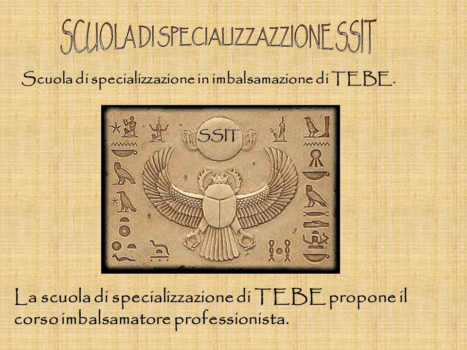 Scuola di specializzazione in imbalsamazione di TEBE.