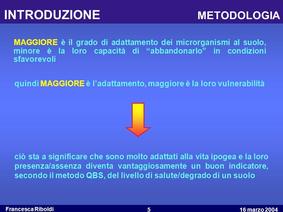 Francesca Riboldi 16 marzo 20045 INTRODUZIONE METODOLOGIA MAGGIORE è il grado di adattamento dei microrganismi al suolo, minore è la loro capacità di