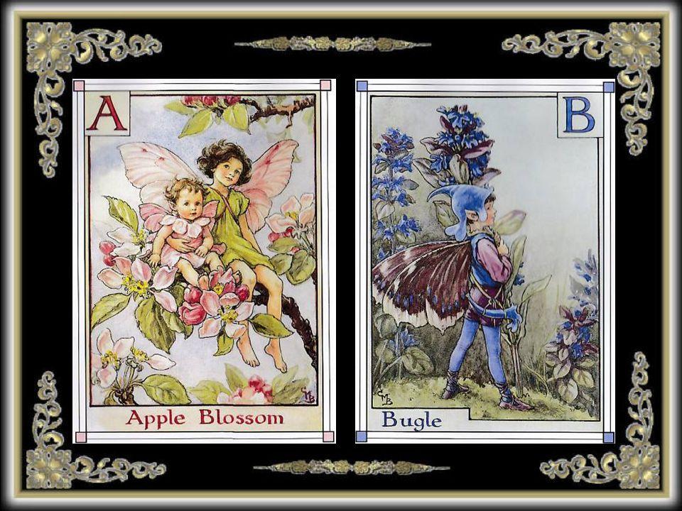 Cicely Mary Barker (1895-1973) è stata un illustratrice inglese conosciuta per una serie di illustrazioni fantasy raffiguranti fate e fiori.