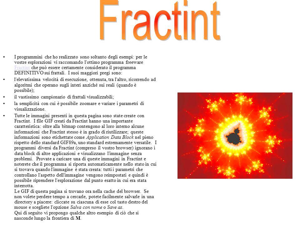 I programmini che ho realizzato sono soltanto degli esempi: per le vostre esplorazioni vi raccomando l'ottimo programma freeware Fractint che può esse
