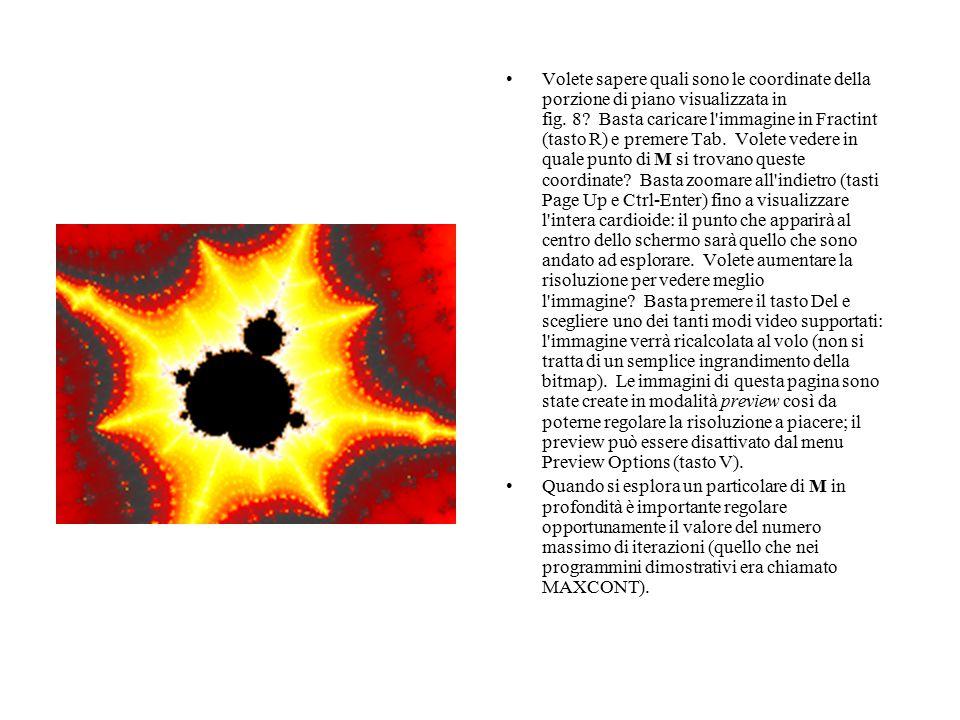 Volete sapere quali sono le coordinate della porzione di piano visualizzata in fig. 8? Basta caricare l'immagine in Fractint (tasto R) e premere Tab.