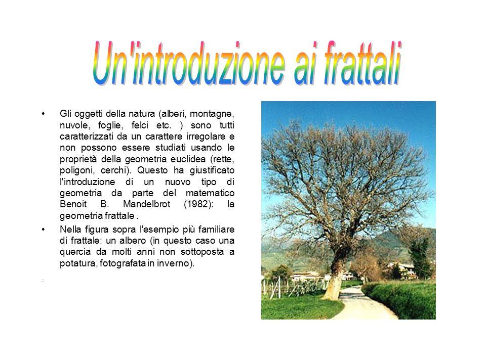 Gli oggetti della natura (alberi, montagne, nuvole, foglie, felci etc. ) sono tutti caratterizzati da un carattere irregolare e non possono essere stu