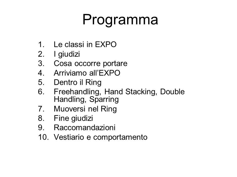 Programma 1.Le classi in EXPO 2.I giudizi 3.Cosa occorre portare 4.Arriviamo all'EXPO 5.Dentro il Ring 6.Freehandling, Hand Stacking, Double Handling,
